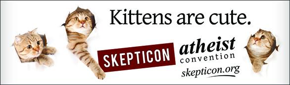 Update: Kitten Billboard